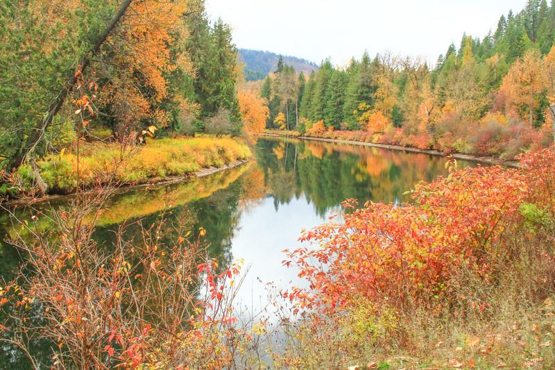 fall 2019 st maries river-1689.jpg
