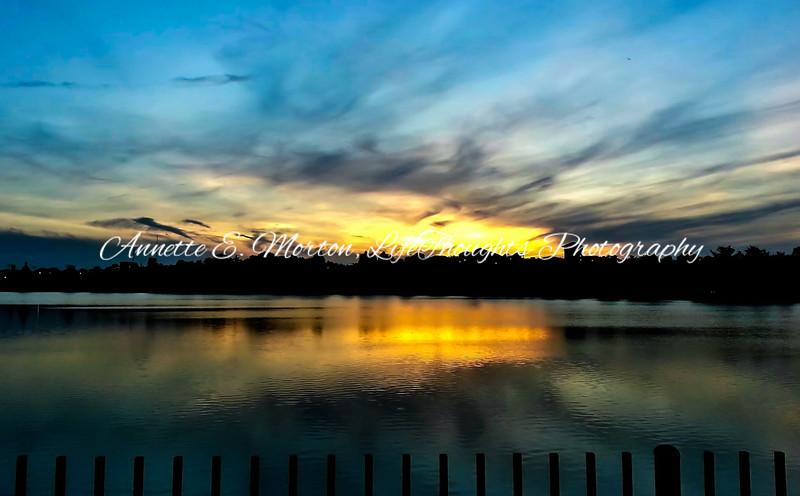 """Beauty at the Bello"" Lake Montebello, Baltimore MD"
