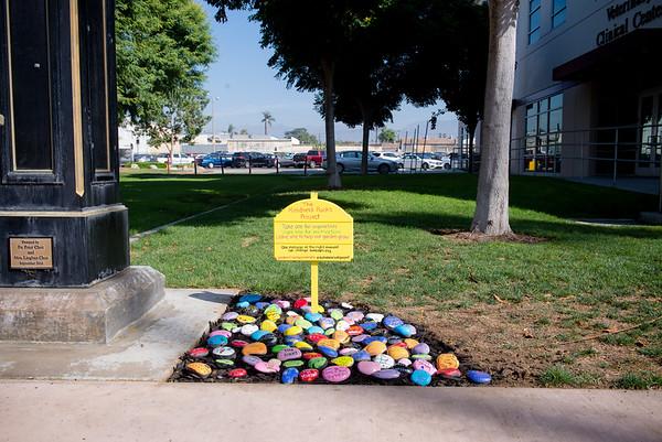 Kindness Rocks Garden at WesternU