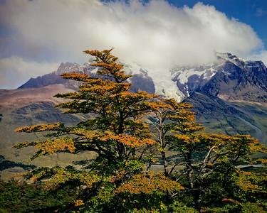 Argentine Landscapes