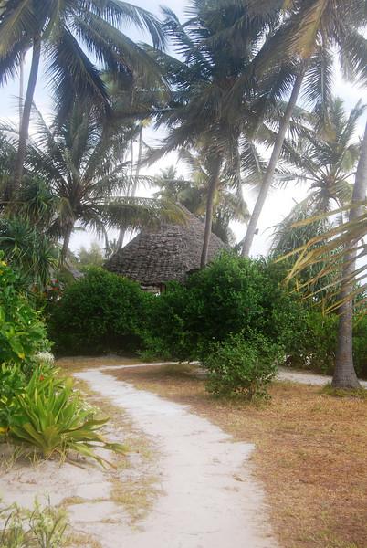 Zanzibar (22).JPG