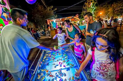 Fair Game (San Ignacio, Baja Sur, Mexico)
