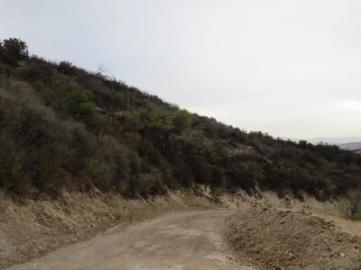 Wildwood Open Space - Santa Clarita