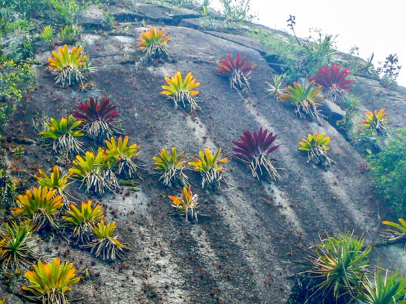 epi cliff.jpg