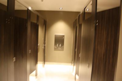 2013-07-02 - Bathroom Final Renovations