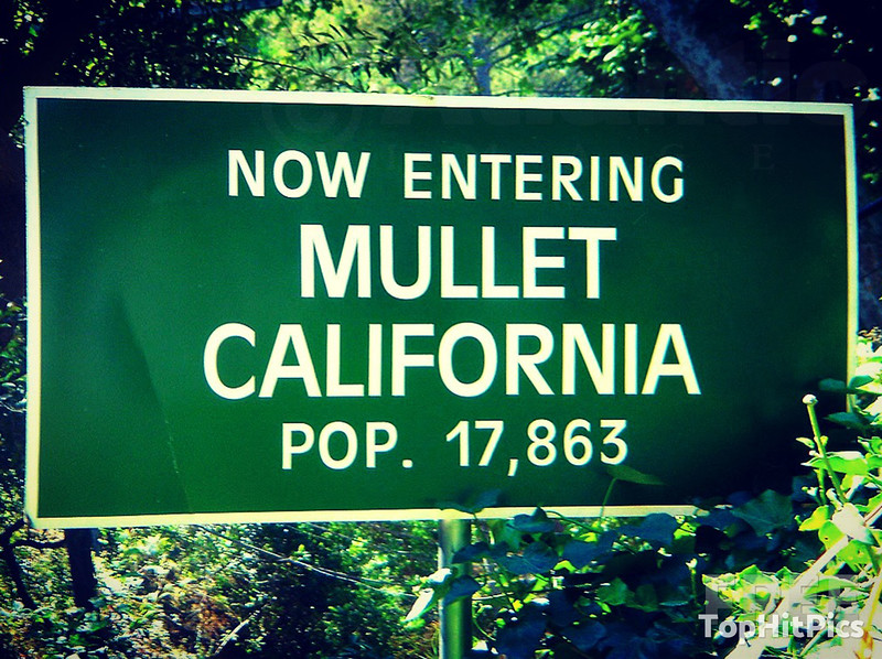 Now Entering Mullet, California Pop 17,863