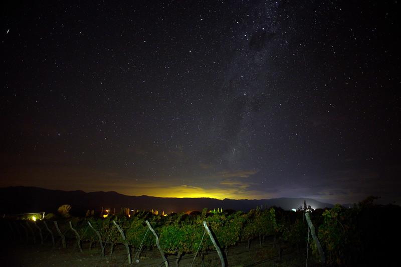 Viñas en la noche - Tolombón - Salta - Argentina