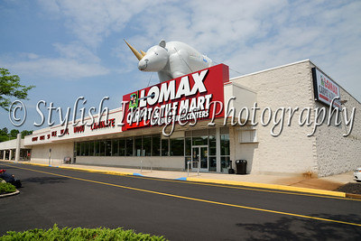 Lomax Carpet and Tile Mart