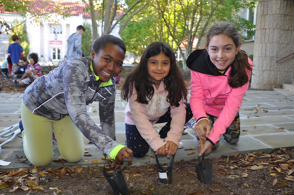 First- and Fifth-Grade Buddies Plant Bulbs for Spring