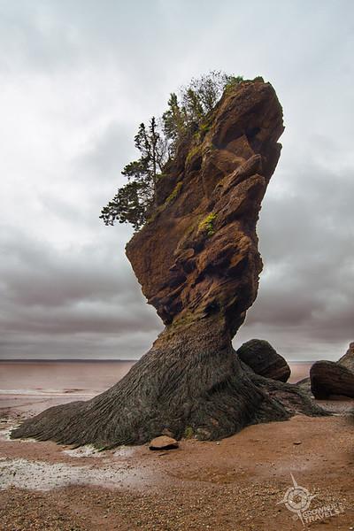 Dramatic Rockwatermark small (1).jpg