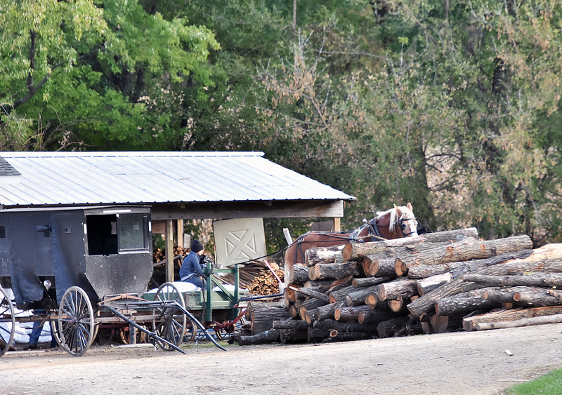 05 Logs- Amish Dalton Wi .jpg