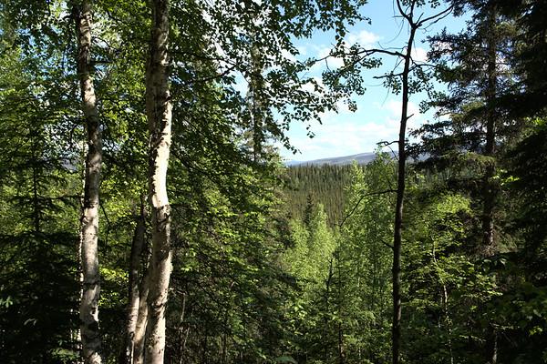 Twin Bears Mountain