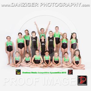 Competitive Gymnastics 3-11-15