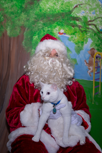 Pet Pictures With Santa-4.jpg