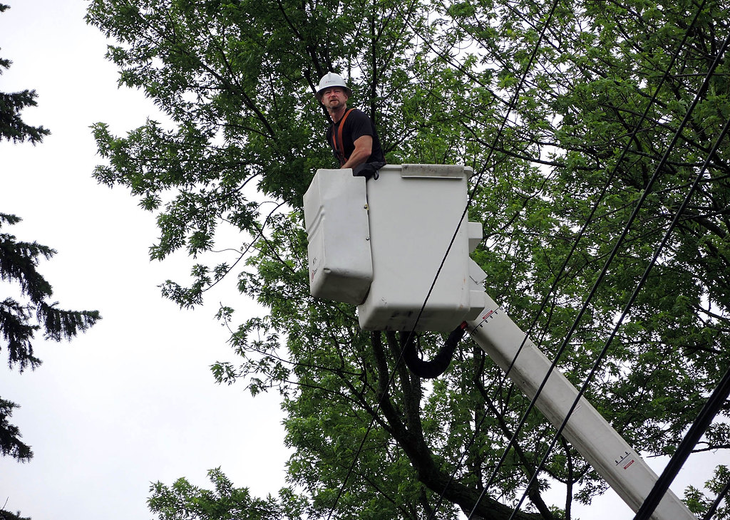. An Xcel Energy utility worker surveys power lines in Falcon Heights on Saturday morning in order to determine areas where work needs to be doneto restore power to about 1,500 residents in the immediate vicinity. (Pioneer Press: Chris Polydoroff)