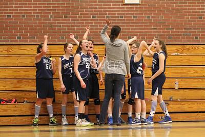 2015 6th Grade Girls Hollis Travel Team