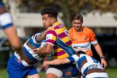 Senior & Under 20 Rugby 2018