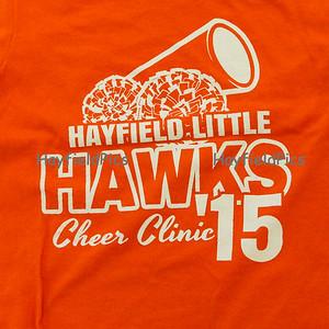 Little Hawks Cheer Clinic 9/23/15