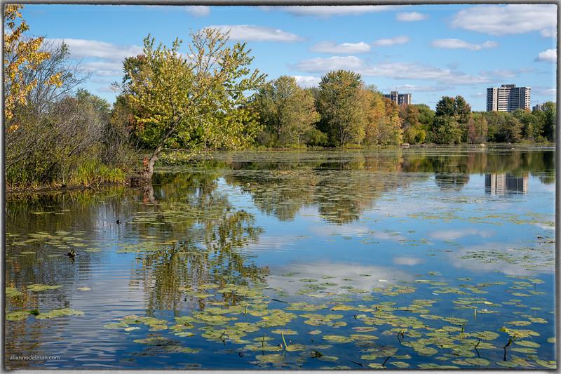 Mud Lake Ottawa