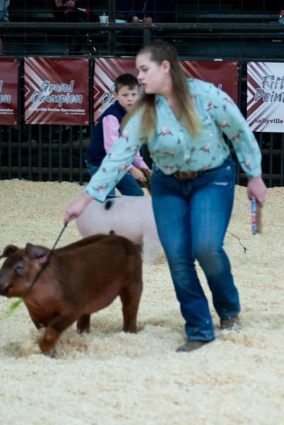 Kellyville Swine Show 12/19/2020