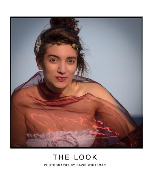 The Look.jpg