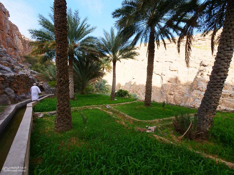 P1211240Al Hamra-Misfat Alabryeen.jpg
