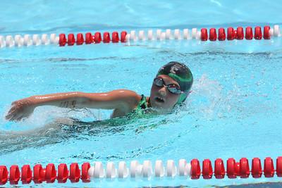 Torrington Swim Meet