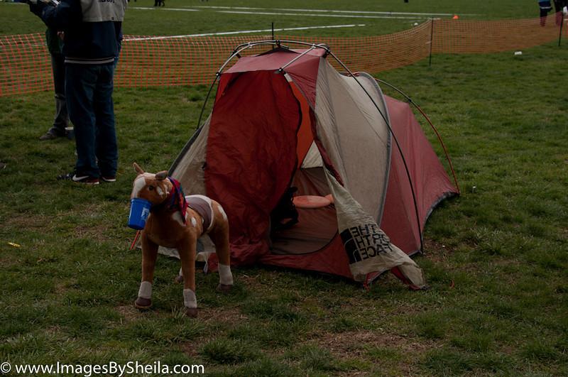 ImagesBySheila_Fools2011_0232_DSC_0344.jpg