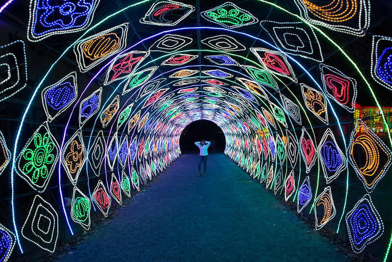 dragon lights 2018-8042.jpg