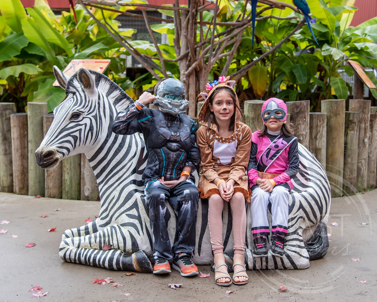 2018 Boo at the Zoo_39.jpg