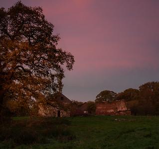 Sunrise at Woking Palace