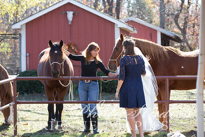 Fun with Horses {leah & johnny}