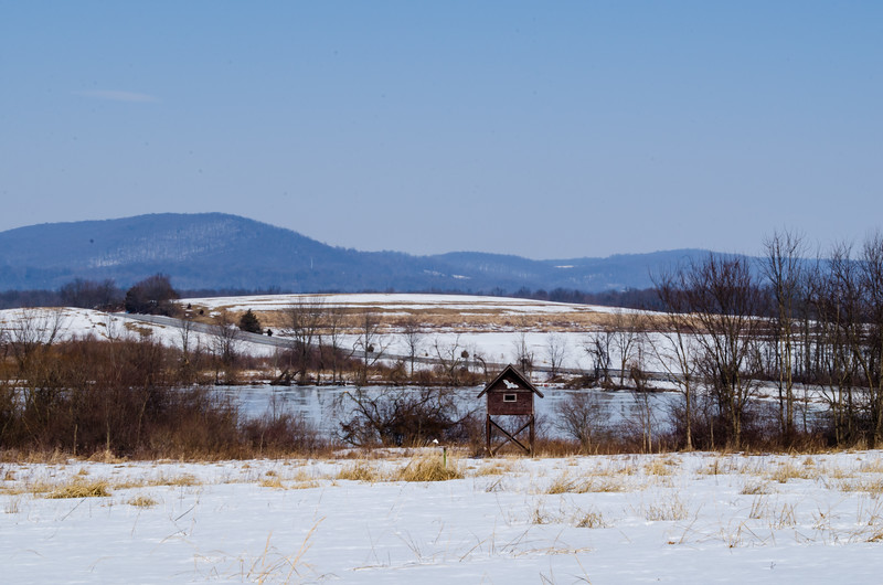 middle creek - pond in winter from visitor center(p).jpg