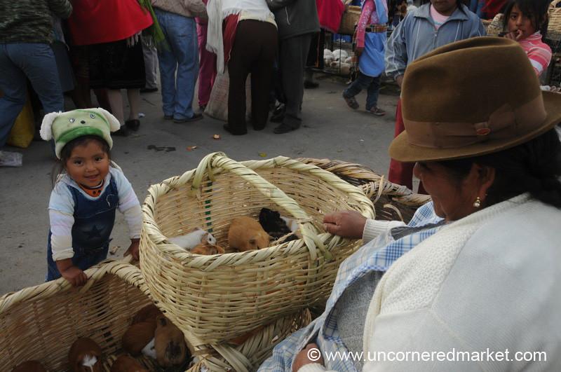 Helping Out Grandma - Saquisili, Ecuador