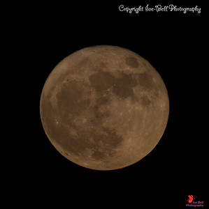 2016 Nov Super Moon