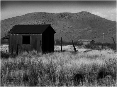 Rural Wilderness BW