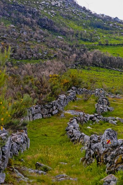 Vouzela-PR2 - Um Olhar sobre o Mundo Rural - 17-05-2008 - 7419.jpg