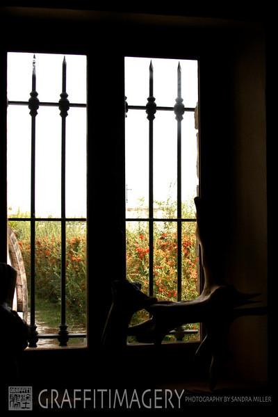 Chauteneuf du Pape France 2009  402.jpg