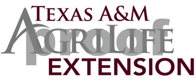 gardening-texas-am-agrilife-extension-service-continues-lecture-series-with-oct-8-talk-on-bulbs-for-southern-climates
