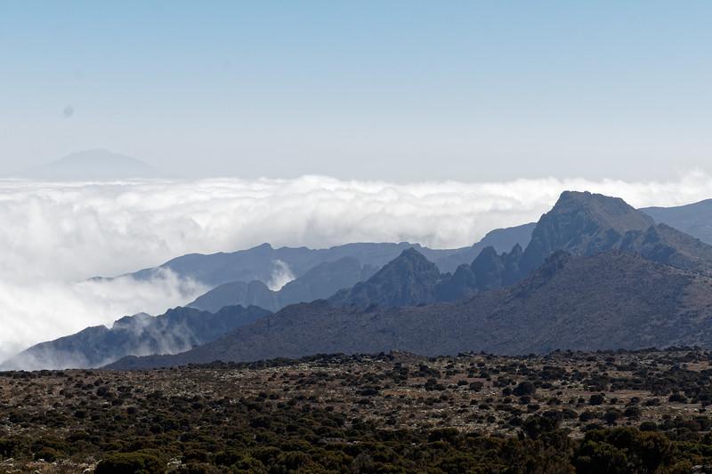 Kilimanjaro Ascent Day 4 - Hike to Shira II Camp