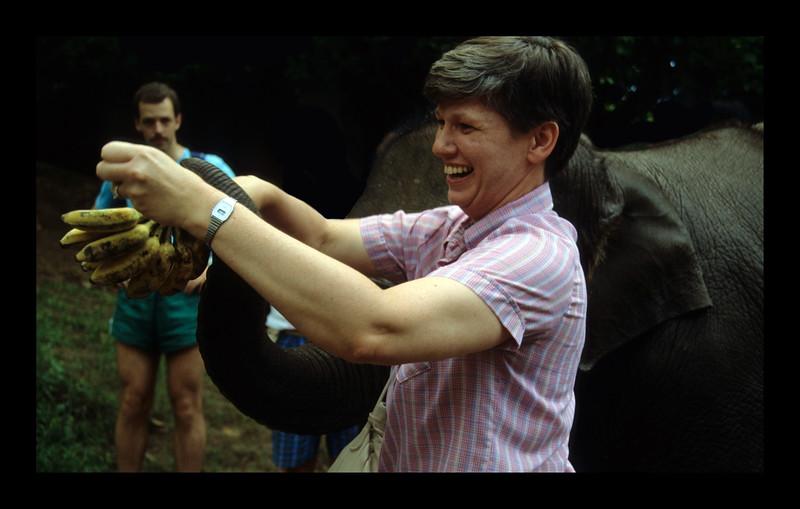 More Bananas - Thailand - 1989.jpg