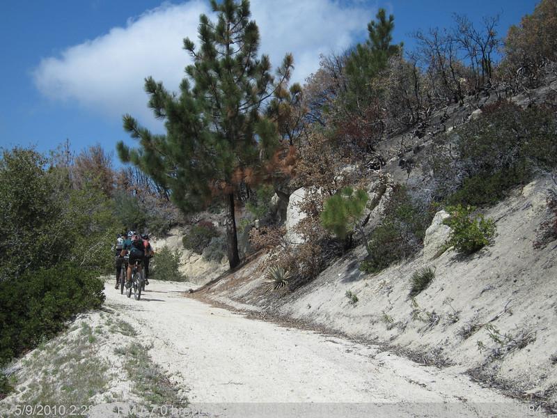 20100509178-Trail Recon, 3N14 Fire Road.JPG