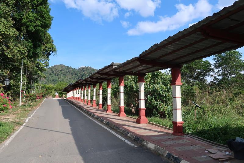 IMG_5245-walkway-to-bus-park.JPG