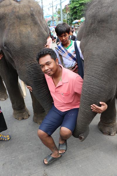 2014-11-14 Surin Elephant Welcome Feast 722.JPG