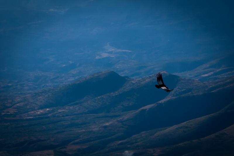 Tarija 201205 Valle de Los Condores (250).jpg