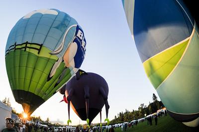Tigard Festival of Balloons 2013