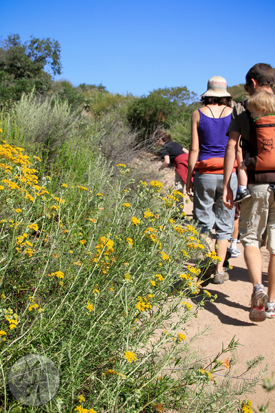 Hiking up Little Sycamore Canyon Trail