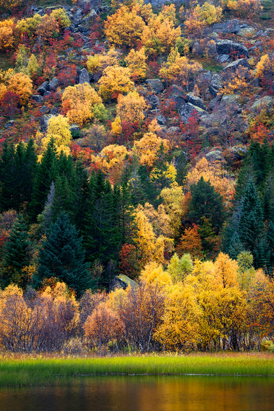 Nusfjord Autumn Lofoten Landscape Photography_1.jpg