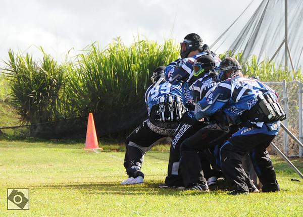 Maui Primitive