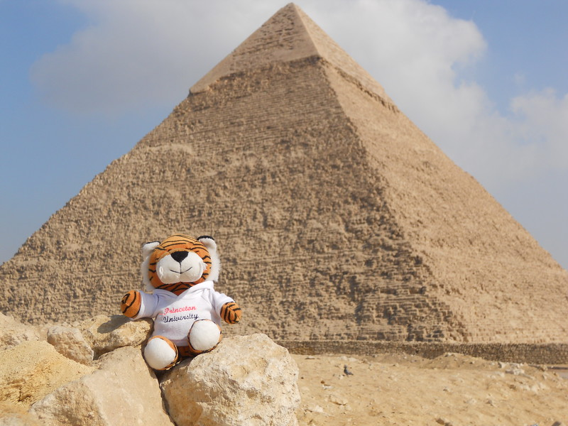 PJ relaxing in front of the pyramids -- Kimberly Collins